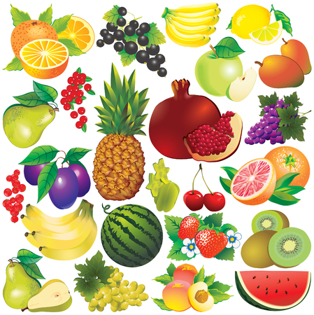 Fruits on a white background. illustration. Stock Vector - 7964785