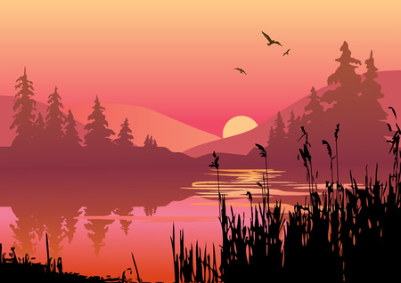 Beautiful sunset on the river.  art-illustration. Vector