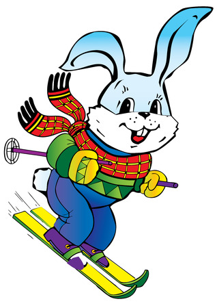 skis: Young hare skiing. art-illustration on a white background.