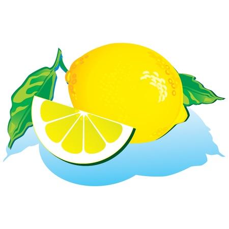 lemon slices: Lemons with green leaves on a white background. Vector art-illustration.