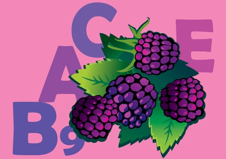 fruited: fruit and vitamins that they contain. blackberry. art-illustration on a pink background.