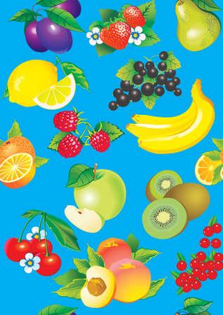 fruited: Juicy fruits  Vector art-illustration on a blue background