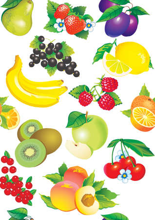 fruited: Seamless pattern of juicy fruits  Vector art-illustration on a white background  Illustration