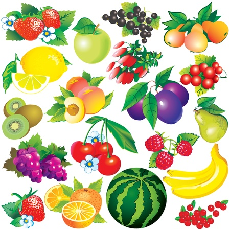 banana leaf food: Juicy fruits  Healthy food  Vector art-illustration on a white background
