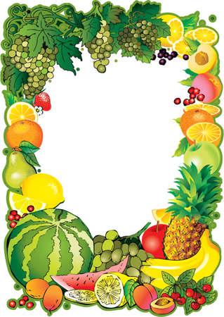 Fruits frame Vector