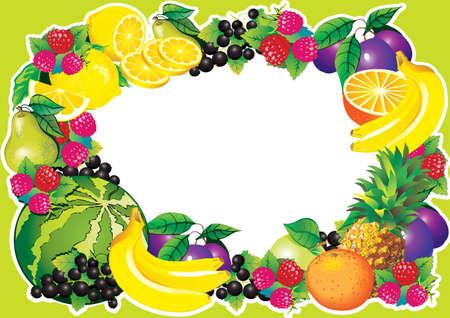 fruited: Fruits frame art-illustration   Illustration