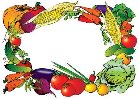 cucumber salad: Colecci�n de verduras en forma de marco para el lugar del arte del texto Vector-Ilustraci�n Vectores