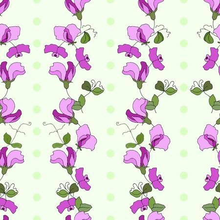 Pisello dolce fiori e foglie stile verticale seamless disegno vettoriale con pois verdi Vettoriali