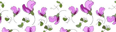 Bordo del modello senza cuciture dei fiori di pisello dolce.