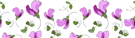 Sweet pea flowers seamless pattern border.