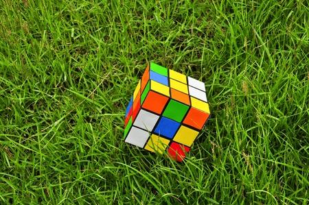cubo: cubo m�gico colorido sobre hierba
