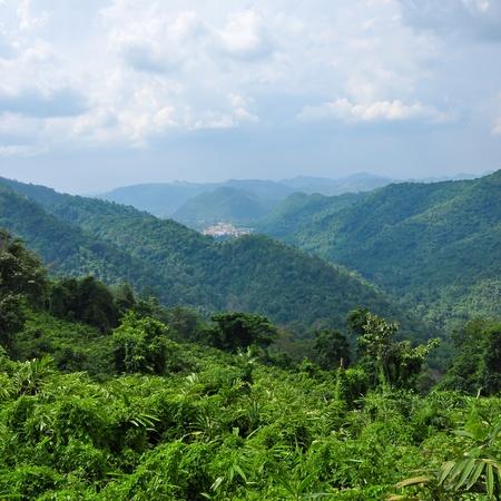 Forest landscape at Khao Yai national park, Thailand photo