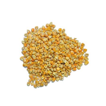 Corn zaden voor het voederen van dieren op een witte achtergrond