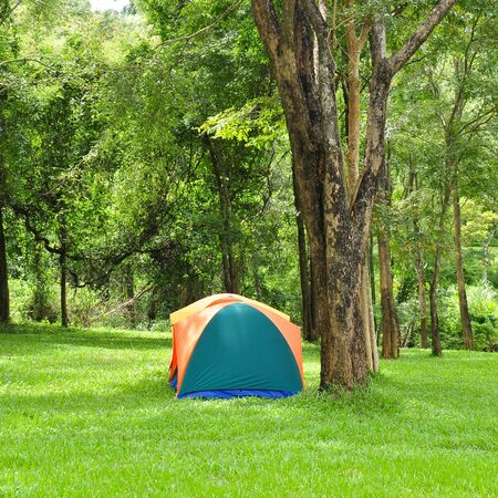 Outdoor tent, forest campsite  photo