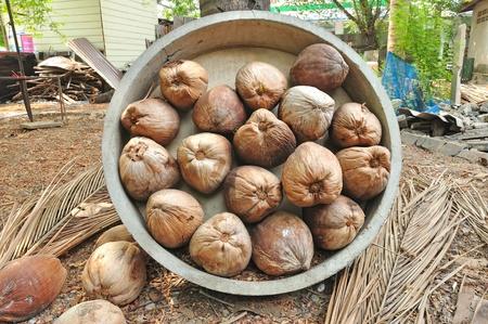 Dry coconut, Thailand Stock Photo - 13184281