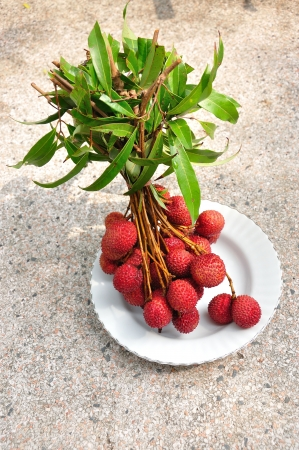 bunch of fresh lychees on plate, Litchi chinensis Stock Photo - 13889620