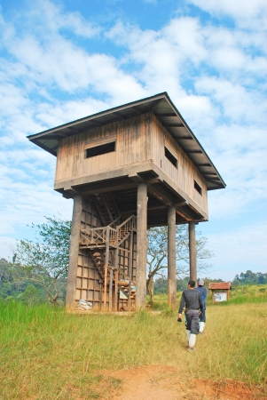 Wildlife watching tower at Khao Yai national park, Thailand  Stock Photo - 13889629