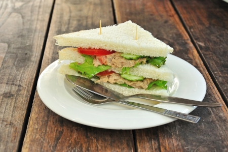 Tuna Sandwich, Easy fast food photo