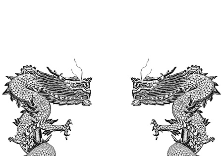 twin dragons on white background, Chinese Style photo