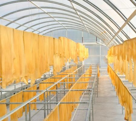 rubber sheet: Rubber sheet in solar drying chamber