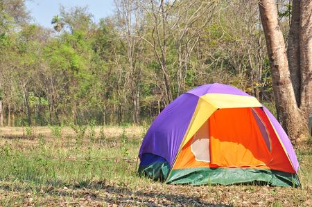 Colorful outdoor tent, forest campsite of national park   photo