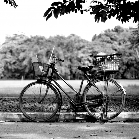 black and white photography: Old bicycle in park, Black and white photography