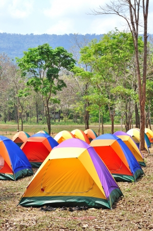 Colorful outdoor tent, forest campsite of Khao Yai national park, Thailand photo