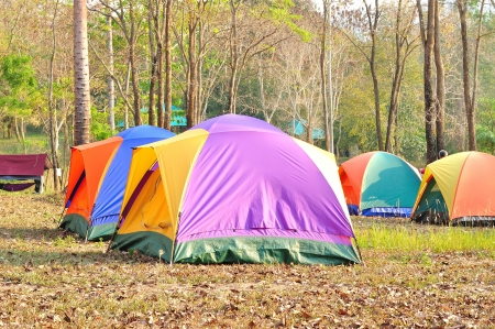 Colorful outdoor tent, forest campsite of Khao Yai national park, Thailand Stock Photo