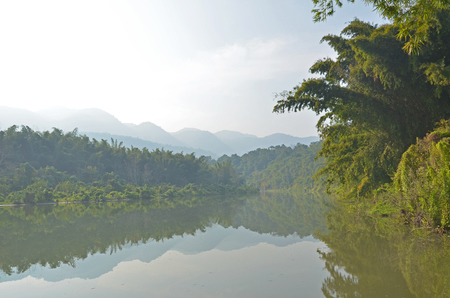 Forest landscape at Huai Kha Khaeng Wildlife Sanctuary, Thailand,