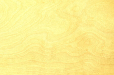 Wood texture, Wood background  photo
