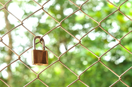 Old padlock with metal mesh fence with green bokeh background
