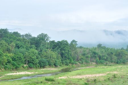 Tropical rainforest at  Huai Kha Khaeng Wildlife Sanctuary, Thailand, Forest landscape at World Heritage