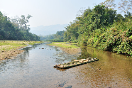 Bamboo raft on river stream in forest landscape
