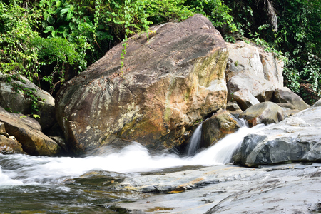 Forest stream from Sirindhorn Waterfall, Thailand Imagens - 81642707