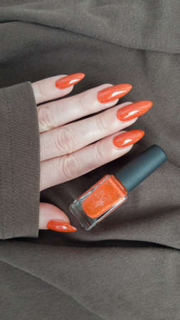 Woman's hands with long nails and a dark red burgundy manicure holds a bottle of nail polish