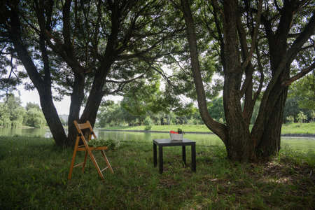 chair and picnic table in the meadow in the park near the lake