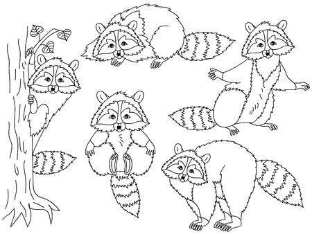 fur trees: Black and white vector cute raccoon set