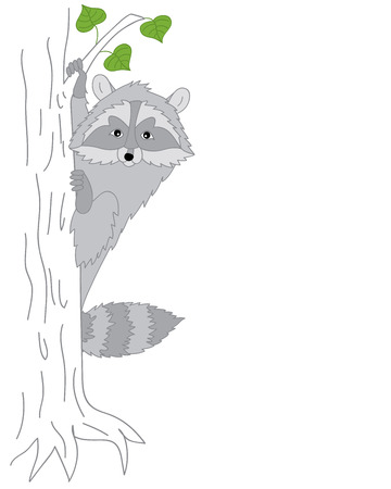 cute graphic: Vector cute grey raccoon looking from the tree Illustration