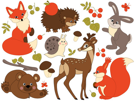 woodland: Set of 7 vector cute woodland animals Illustration
