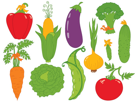 garden peas: Vector vegetables set with cucumber, tomato, cabbage, carrot, corn, pea and onion