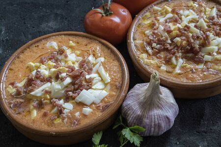 Salmorejo typical Spanish food served in clay bowl Banque d'images
