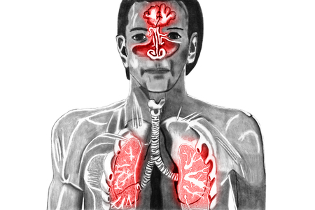 Cold upper respiratory tract isolated