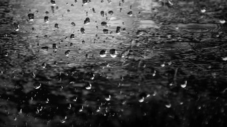 humid: Raindrops in monochrome black and white Stock Photo