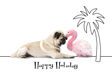 Happy Holliday - Pug dog and flamingo lie under a palm  Stock Photo