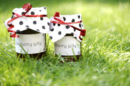 2 jars of homemade raspberry jelly stand on green meadow. The labels show text: Raspberry Jelly. They have paper hoods with black dots and a red bow. Sunlight.
