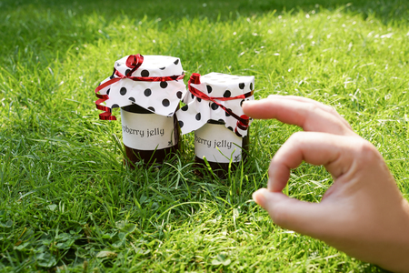 2 jars of homemade raspberry jelly stand on green meadow. The labels show text: Raspberry Jelly. They have paper hoods with black dots and a red bow. A hand symbolically shows that it tastes good.
