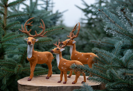 Figures that look like deer standing between dense fir trees. Wintery color atmosphere in the coniferous forest.