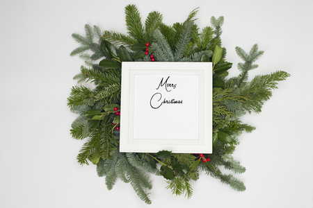 A circle of branches of different fir varieties. Green and blue firs. A white frame shows the english text: merry christmas.