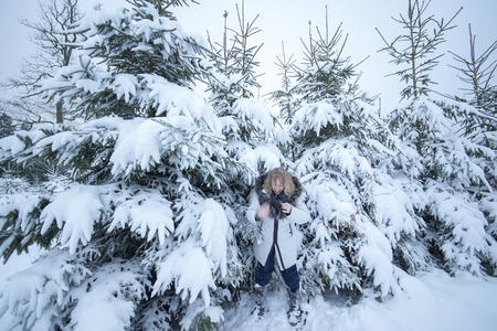 A middle aged woman with blond hair plays with snow. She is happy and shakes her cold hand. In the background are snow covered fir trees. Zdjęcie Seryjne
