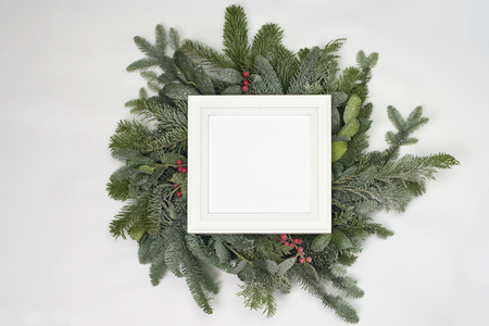 A circle of branches of different fir varieties. Green and blue firs. A white frame with copy space.